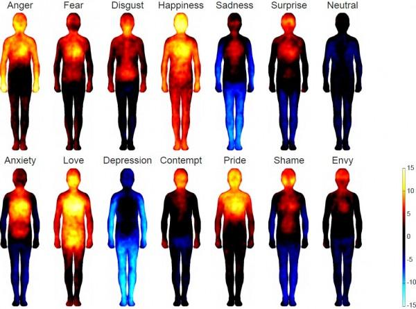 감정에 따른 신체감각지도가 나왔다. 노란색은 해당 부위의 감각이 증가한 것을, 푸른색은 감각이 감소한 것을 나타낸다. - 미국 국립과학원회보(PNAS) 제공